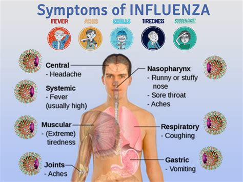 flu like symptoms after c section influenza vaccine