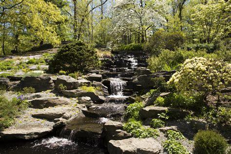 Rock Garden Inn Maine Morning Eye Inspiration S Quarry Plant Talk