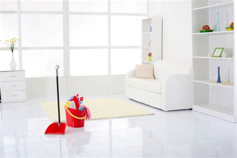 spotless house professional cleaning tips my decorative