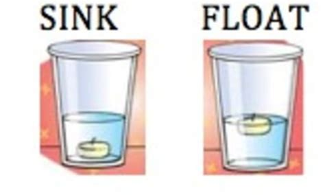 Objects That Sink And Float by Sink Or Float Lesson Plan Grade 1 By Baxter Tpt