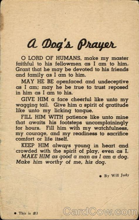 dogs prayer a s prayer dogs