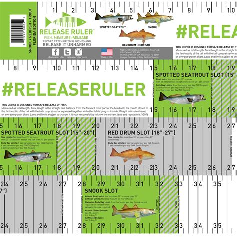 fish ruler for boat walleye release ruler release ruler
