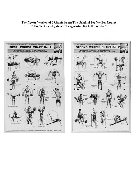 6 best images of weider 8530 exercise chart weider home