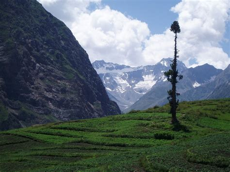 Essay On A Visit To Kaghan Valley by Essay On Visit To Naran Kaghan Hotels