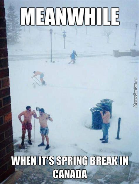 Spring Meme - spring break memes best collection of funny spring break