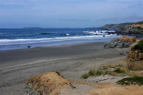 dog house bodega bay take the family to dillon beach ca even your dog beachhouse com travel blog