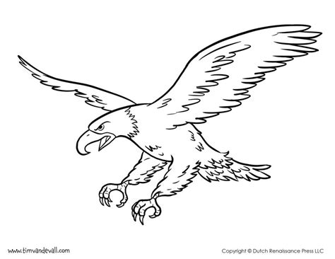 an american eagle colouring pages coloring page of harpy