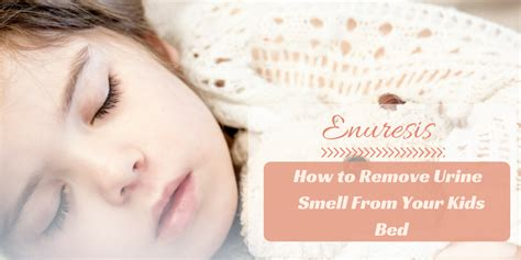 how to remove urine smell enuresis how to remove urine smell from your bed remove odors from clothing