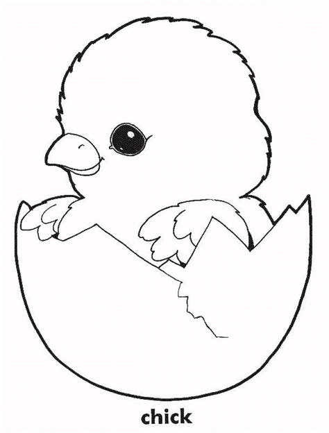 coloring book pages chickens printable chicken coloring pages coloring home