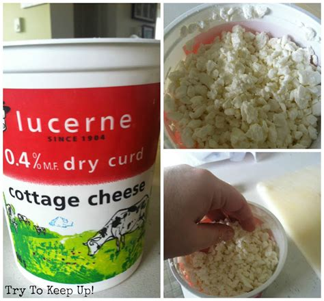 Dried Curd Cottage Cheese by Wcld Guilt