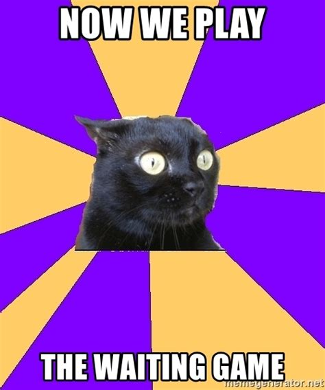 Anxiety Cat Meme - now we play the waiting game anxiety cat meme generator