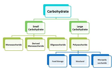 l form carbohydrates pmt carbohydrate i