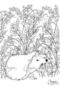 best images about coloring pages on coloring