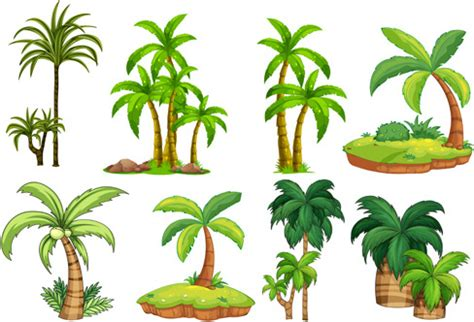 palm tree svg palm tree free vector download 5 045 free vector for