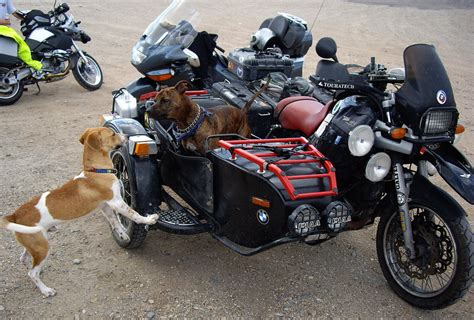 in sidecar motorcycle 74 bmw sidecar