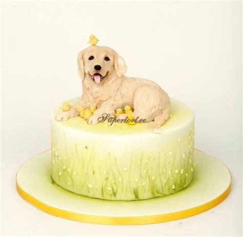 golden retriever cake 1000 images about cakes puppies and kittens on cakes kitten cake and