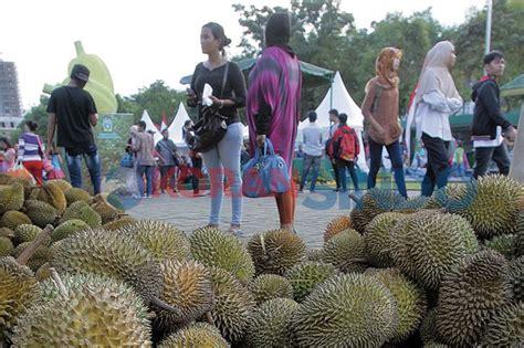 gambar budidaya durian unggul tanaman bunga hias usaha