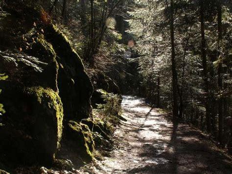 selva negra pais margravino 3899172558 a 241 o internacional de los bosques en alemania alemania por descubrir