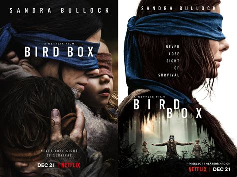 Bird Box by Bird Box Orange Magazine