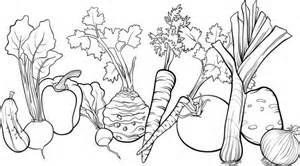 vegetable garden free coloring pages art coloring pages