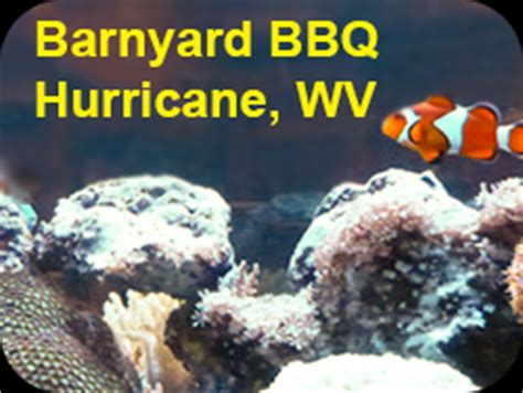 Barnyard Bbq Wv Saltwater Freshwater Aquarium Service Specialty Pets