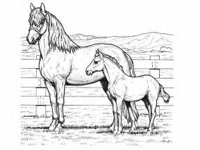 horses coloring pages coloring pictures printable coloring pages