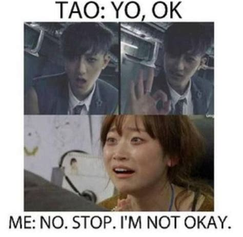 Tao Meme - 42 best images about exo memes on pinterest suho funny