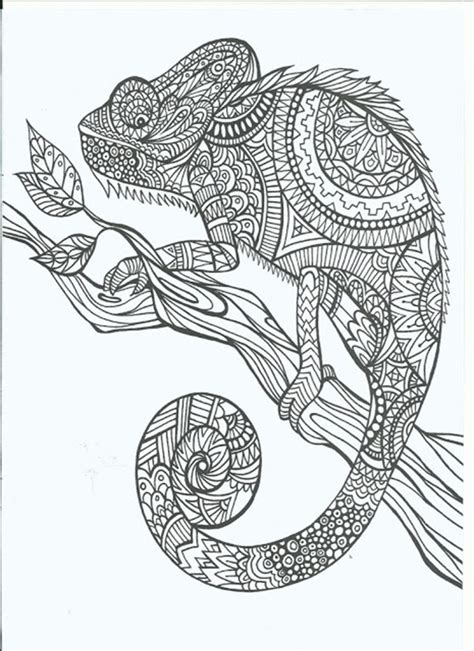 coloring for adults free printable coloring pages for adults 12 more designs