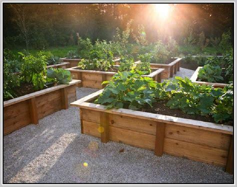 raised bed vegetable garden layout garden