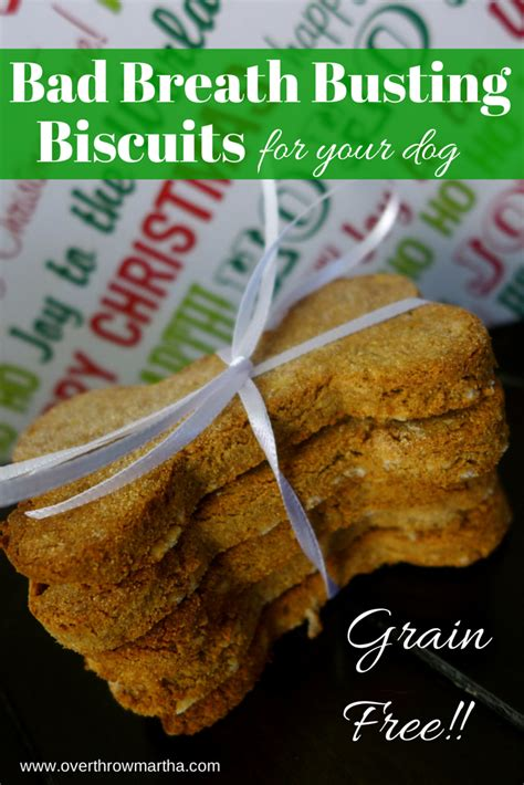 is cinnamon bad for dogs bad breath busting biscuits for your kats corner essentially simple