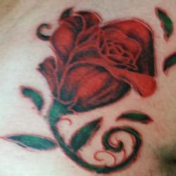 tattoo removal shreveport la electric 42 photos 984 st
