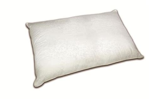 Sleep Innovations King Pillow by Sleep Innovations 174 King Comfort Pillow At Menards 174