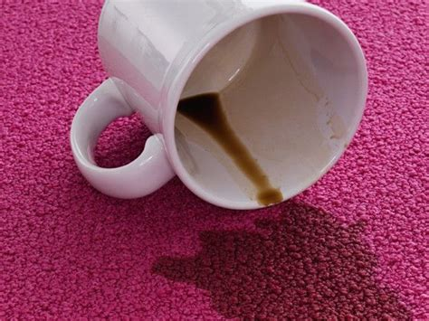how to get coffee stains out of couch 17 best images about cleaning tips on pinterest stains