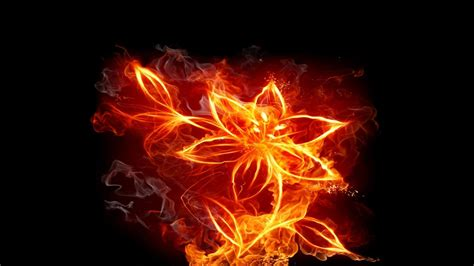fire flower wallpaper wallpapertag