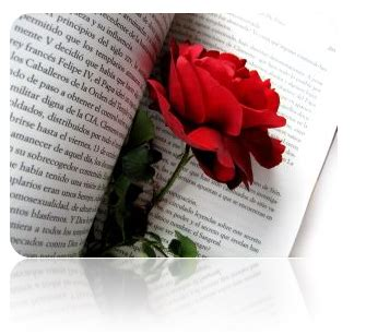 Imagenes De Literatura Poetica | 1 2 la funci 243 n po 233 tica edwin quinteros portafolio de