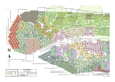 garden design specifications and plans rumbold ayers
