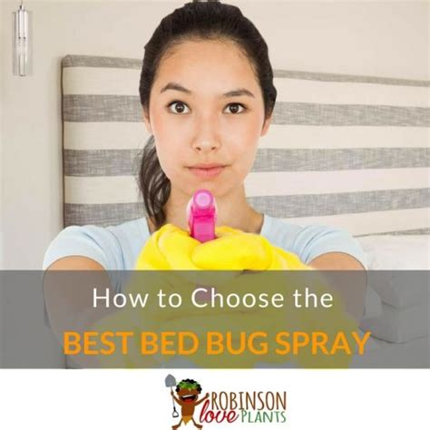 best bed bug spray reviews which bed bug spray reviews offer the best advice feb 2018 buyer s guide and reviews