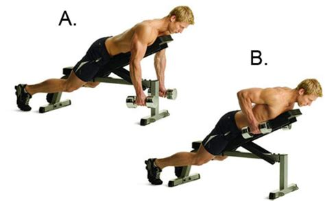 incline bench row the body you want in 28 days