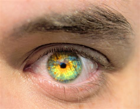 eye color changing contacts contact lenses that change your eye color change your