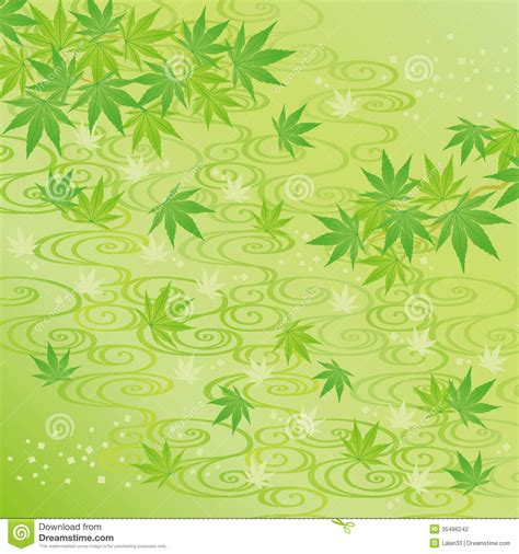 green japanese wallpaper green background of japanese maple leaves stock vector