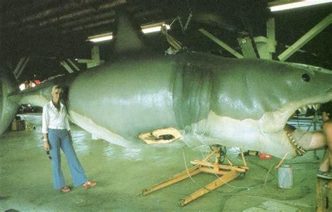 ataque de tiburon submarino en sudafrica 191 superado el miedo por tibur 243 n