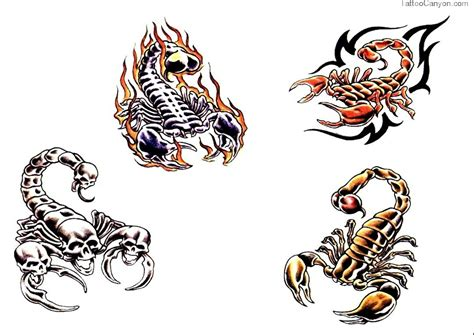 scorpion tattoo pictures designs scorpion tattoos