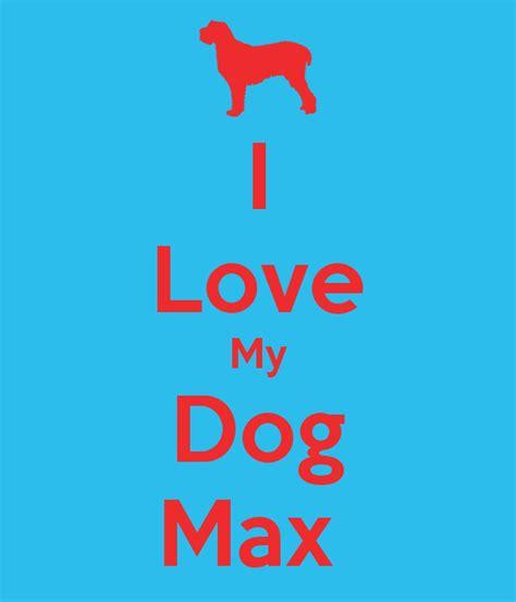 love dogs wallpaper wallpapersafari