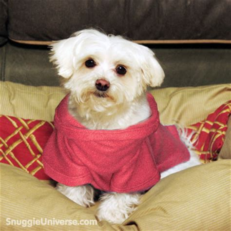 snuggie for dogs pink snuggie 174 see snuggies snuggieuniverse