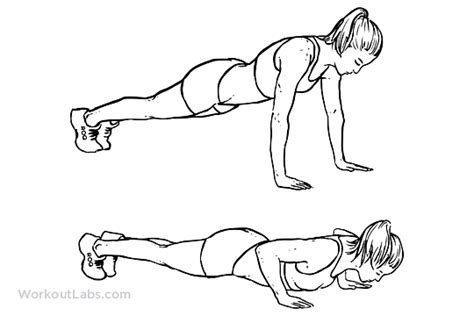 push up diagram push up diagram 28 images mind beard weekend workout