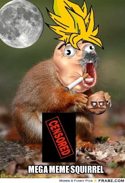 Dead Squirrel Meme - up squirrel memes