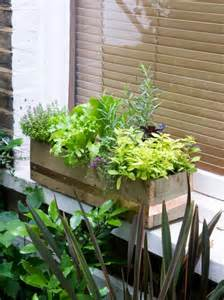 window box herb garden make a window box of herbs and lettuce hgtv
