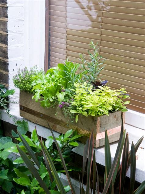 window herb planter make a window box of herbs and lettuce hgtv