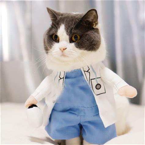 cat clothes pet supplies cat clothes cats wear pet coats hoopet
