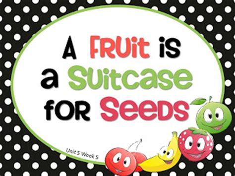 a fruit is a suitcase for seeds grade treasures reading powerpoints freebie units 3